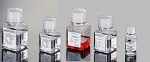 Réactifs pour biologie moléculaire et cellulaire / liquides