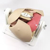 Simulateur pour chirurgie mini-invasive / pour chirurgie cardiaque / de poitrine