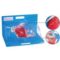 Modèle anatomique glutéal / pour injections
