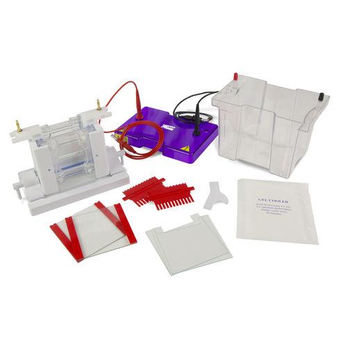 système d'électrophorèse pour protéines / vertical / de paillasse
