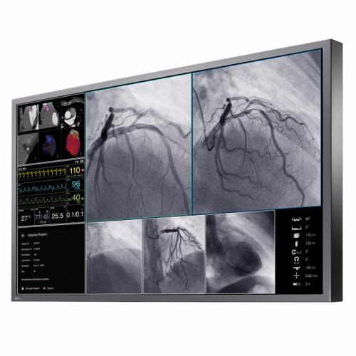 écran de salle d'opération / pour imagerie médicale / 4K / LCD