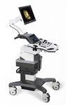 échographe sur plate-forme, compact / pour échographie gynécologique et obstétrique / pour échographie urologique / noir et blanc