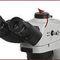 microscope de laboratoire / optique / trinoculaire / à fluorescence