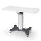 table à translation électrique / à hauteur variable / sur roulettesRT BRodenstock Instruments
