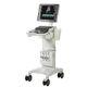 échographe sur plateforme / pour échographie cardiovasculaire / pour échographie en soins urgentistes