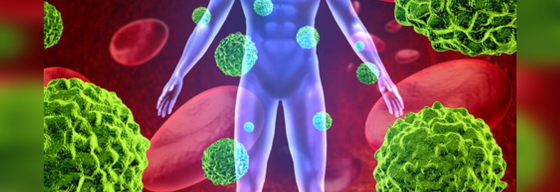 L'analyse complète indique la dynamique de système immunitaire après l'immunothérapie