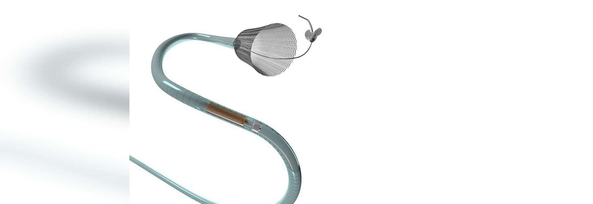 Canalisation Flex Embolization Device Approved pour petit et moyen Brain Aneurysms