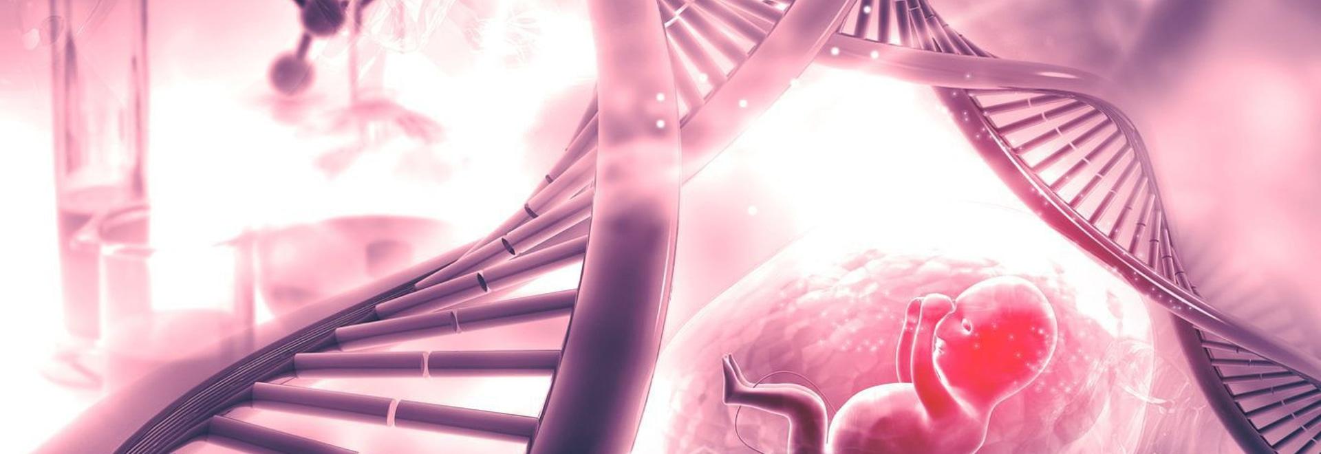 Diagnostic prénatal des maladies rares : L'aube des méthodes non invasives