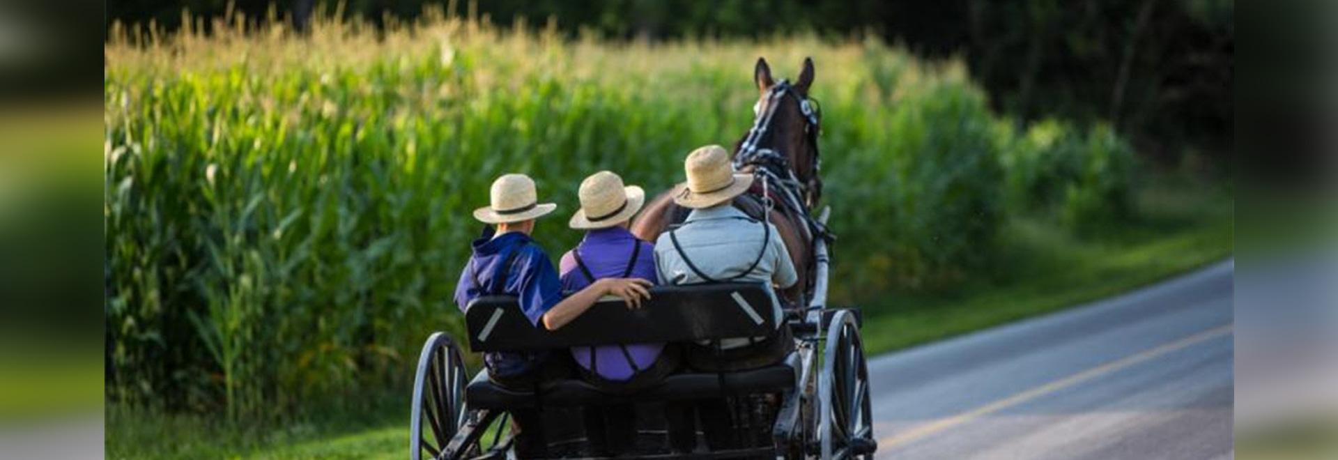 Le groupe amish d'isolement porte le gène anti-vieillissement