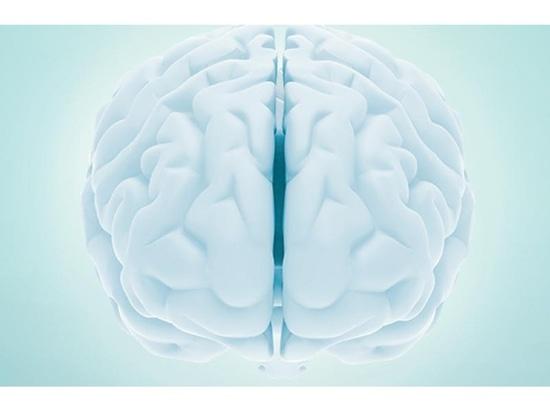 l'étude soutenue par NIH identifie des biomarkers de cerveau attachés à PTSD grave