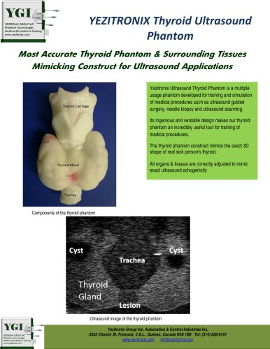 Thyroid Ultrasound Phantom