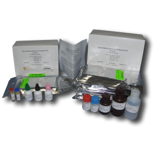 kit de test pour maladies infectieuses / pour anémie / pour équidés / d'anticorps