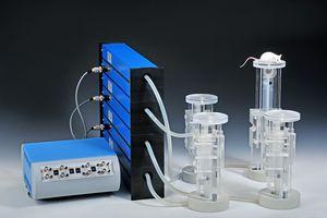 labyrinthe d'expérimentation à eau