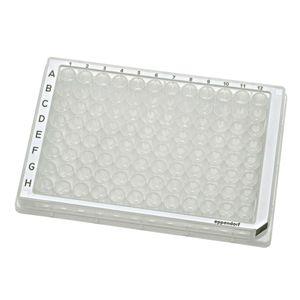 microplaque pour PCR