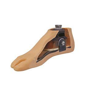 prothèse externe de pied type SACH / multi-axiale / 2 / pour la marche