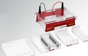 système d'électrophorèse sur gel d'agarose