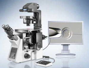 microscope de laboratoire / numérique / inversé