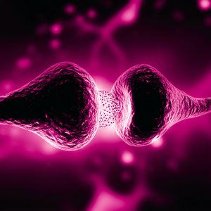 réactif anticorps monoclonal
