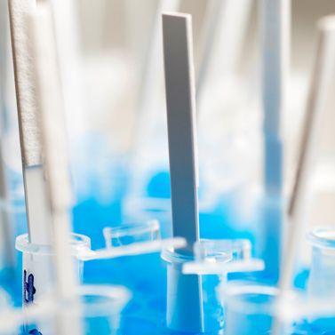 test rapide pour ADN