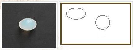 implant testiculaire / anatomique / silicone