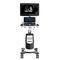 échographe sur plateforme, compact / pour échographie polyvalente / noir et blanc / doppler couleurCBit 9CHISON Medical Technologies