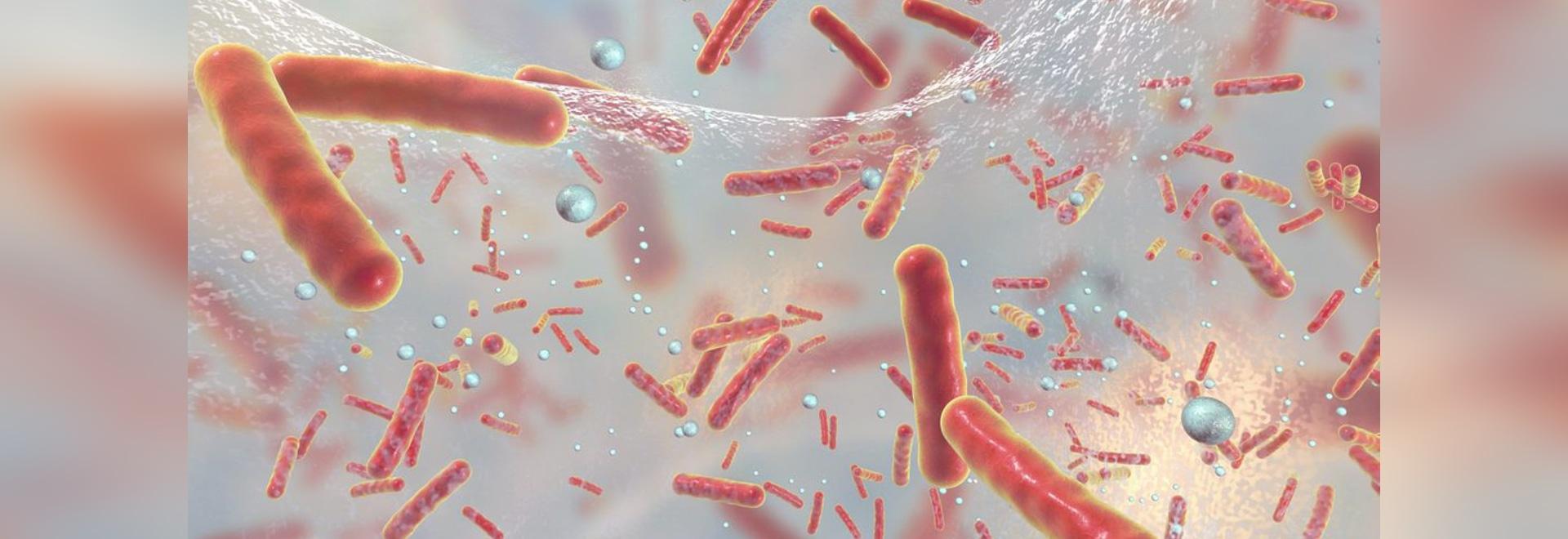 L'apprentissage automatique identifie les gènes de résistance antibiotiques
