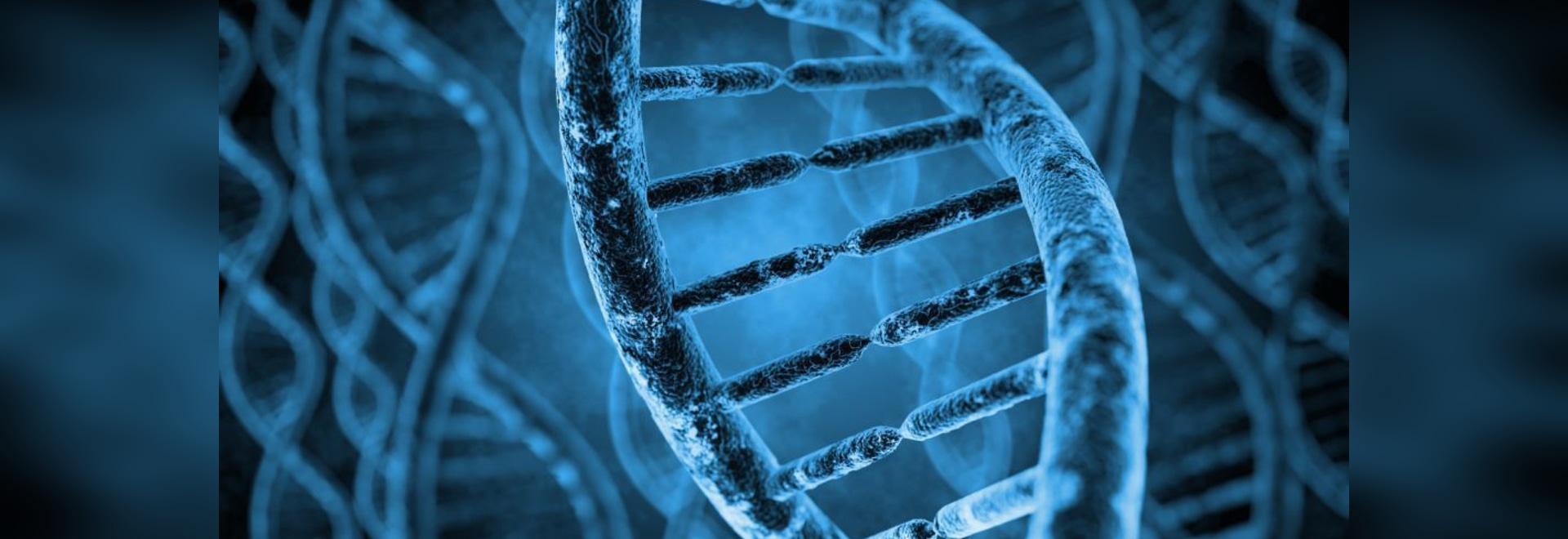 Penser à l'extérieur du congélateur : Stockage de l'ADN et de l'ARN