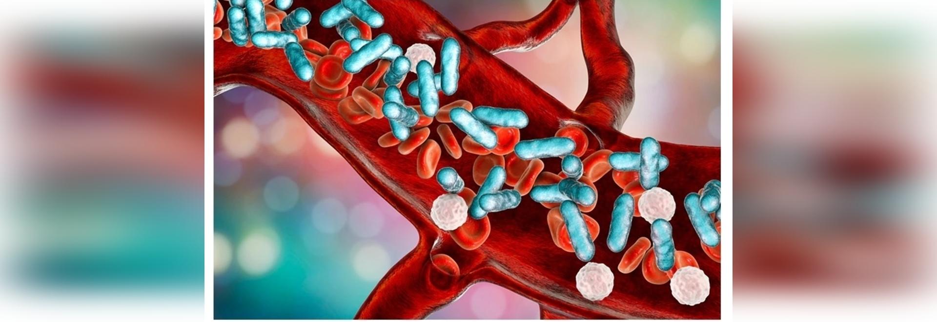 Vaccin à base de biomatériaux contre les infections bactériennes