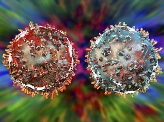 Rogue'Cellule Immunitaire X' est un type de cellule complètement nouveau. Cela pourrait déclencher le diabète de type 1.