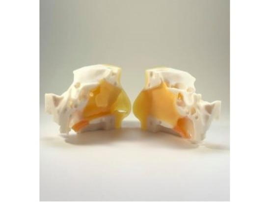 Covid-19 : Simulateurs de prélèvement nasopharyngé imprimés en 3D pour la formation