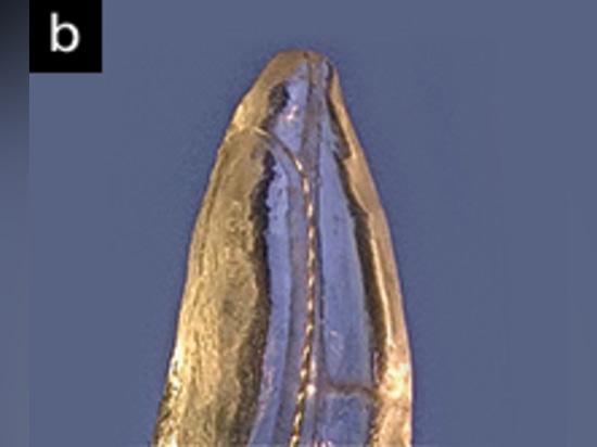 Plan rapproché de reproduction de TrueTooth montrant un K-dossier coudé du numéro 10 avançant dans un canal accessoire apical. (Courtoisie des laboratoires dentaires d'éducation.)