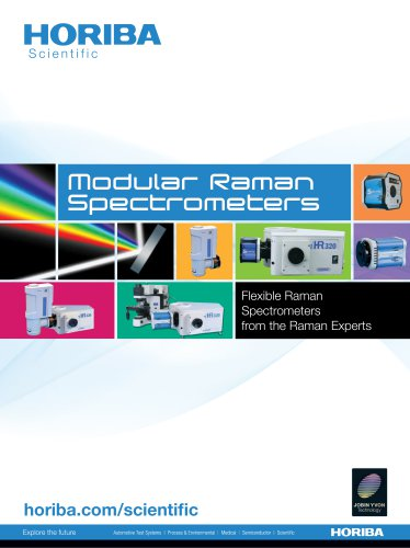 Modular Raman Spectrometers