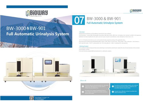 Full Automatic Urine Analysis Workstation System