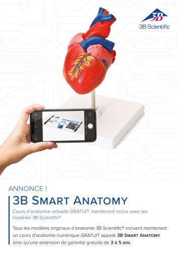 3B Smart Anatomy inclus avec les modèles 3B Scientific