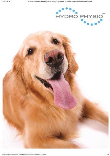 Canine underwater Hydrotherapy Treadmills