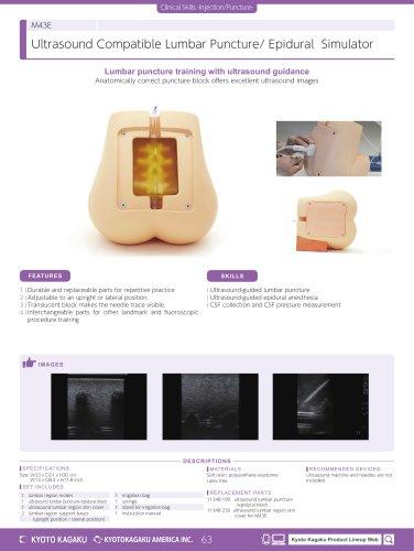 M43E Ultrasound-guided Lumbar Puncture Simulator