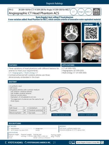 PH-3 Angiographic CT Head Phantom ACS