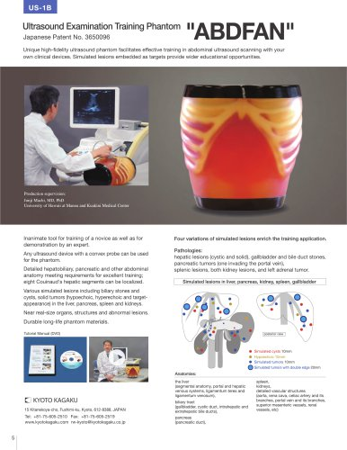 US-1B Ultrasound Examination Training Phantom