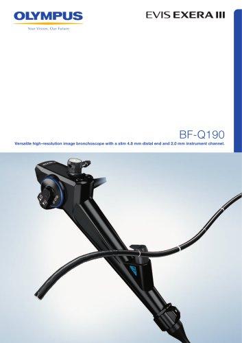 BF-Q190