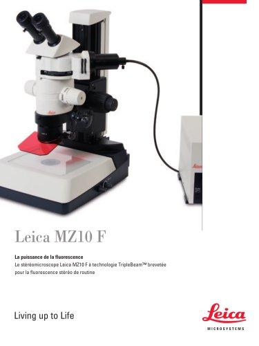 MZ10 F