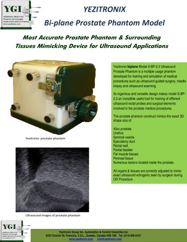 YEZITRONIX - Bi-plane Prostate Phantom  Model