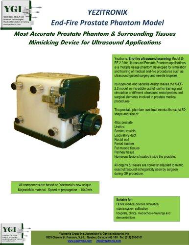 YEZITRONIX End-Fire Prostate Phantom Model
